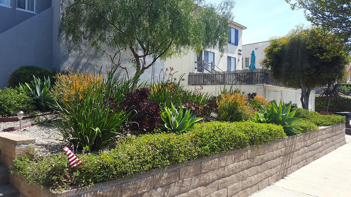 Sacred Garden Landscape Design