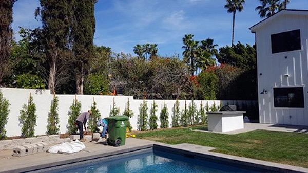 services-garden-maintenance