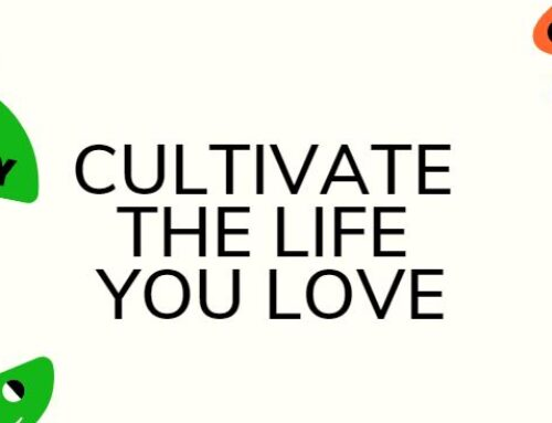 Cultivate The Life You Love